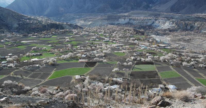 spring-blossom-nagar-valley-minapin-nagar