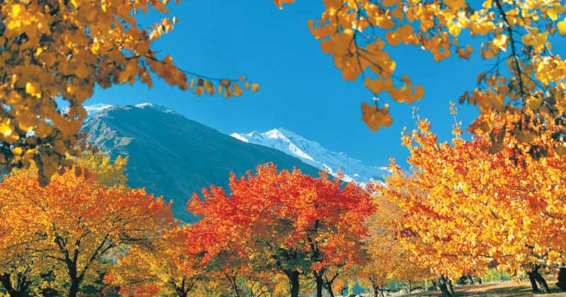 rakaposhi-in-winter-autumn-tour-to-rakaposhi-and-hunza-valley